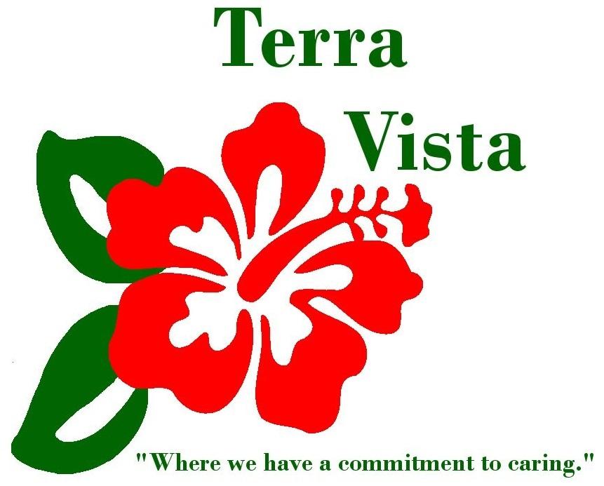 Terravistalogoweb